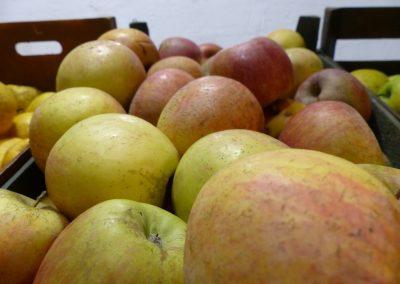 Frutas ecológicas Barcelona